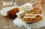 Day 6 (blog)